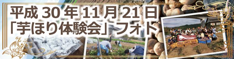 静岡県掛川市のスーパーサンゼン(三善)−芋掘り体験